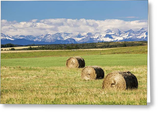 Hay Bales Greeting Cards - Three Hay Bales In A Field Greeting Card by Michael Interisano