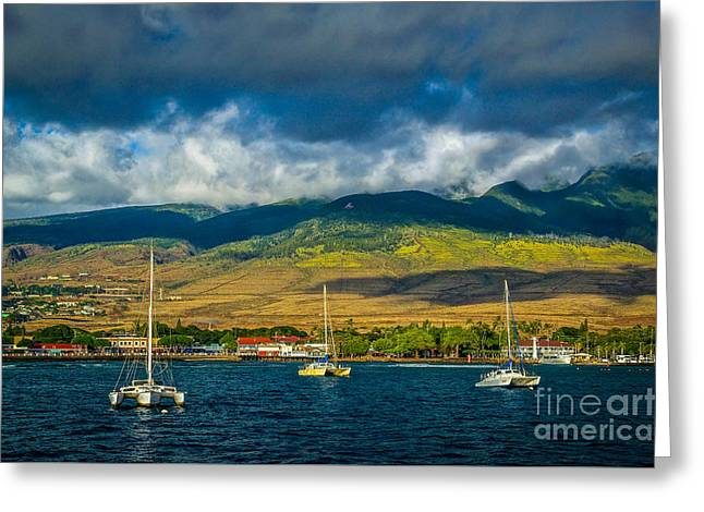 Lahaina Greeting Cards - Three in the Bay Greeting Card by Ken Andersen