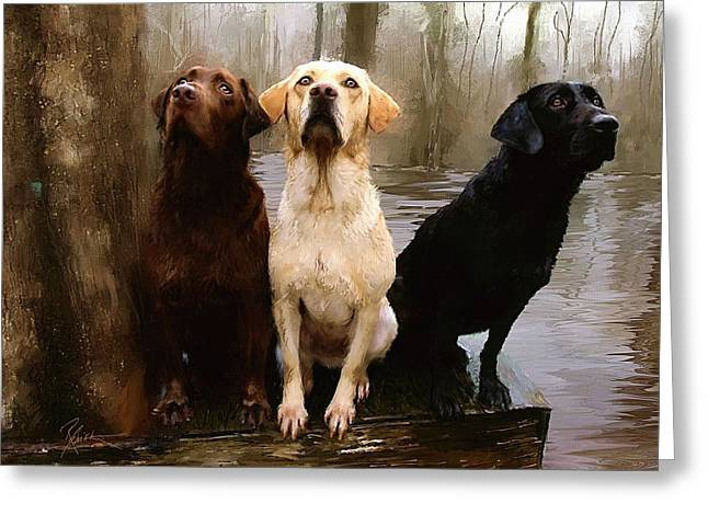 Misty Greeting Cards - Three Labs Greeting Card by Robert Smith