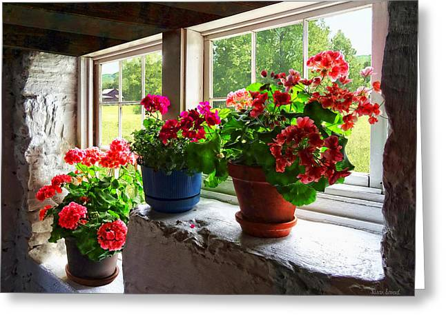 Geraniums Greeting Cards - Three Pots of Geraniums on Windowsill Greeting Card by Susan Savad