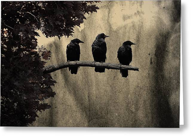 Birds On A Branch Greeting Cards - Three Ravens Greeting Card by Gothicolors Donna Snyder
