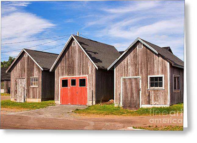 Shed Greeting Cards - Three Sheds in Prince Edward Island Greeting Card by Louise Heusinkveld