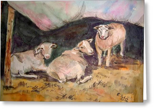 Pen And Ink Framed Prints Paintings Greeting Cards - Three sheep Greeting Card by Saga Sabin