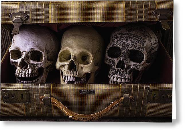 Intrigue Greeting Cards - Three Skulls In Suitcase Greeting Card by Garry Gay