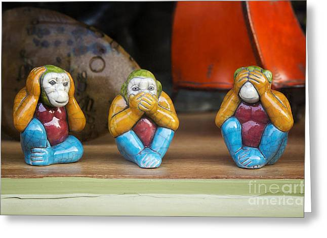 Three Wise Monkeys Greeting Card by Tim Gainey