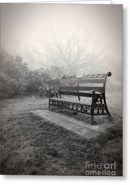 Ghostly Greeting Cards - Throne of the Fog Queen Greeting Card by Pete Edmunds