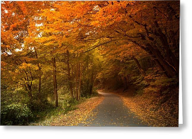 Through The Autumn Glory Greeting Card by Jenny Rainbow