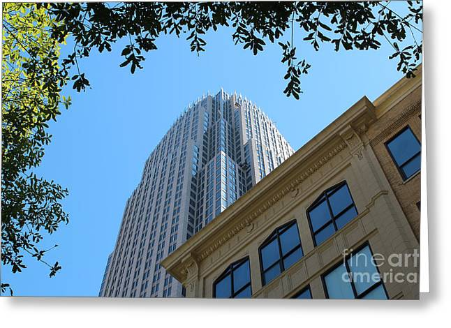 Charlotte Nc Prints Greeting Cards - Through the Clearing Greeting Card by Robert Yaeger