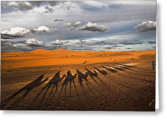 Dromedary Greeting Cards - Through The Dunes Of Merzouga (morocco). Greeting Card by Joxe Inazio Kuesta Garmendia