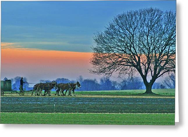 Amish Country Greeting Cards - Through The Fields Greeting Card by Scott Mahon