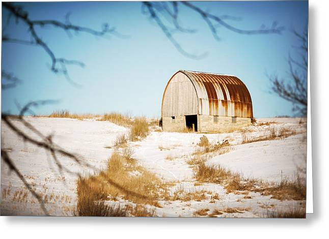 Through The Trees Greeting Card by Todd Klassy