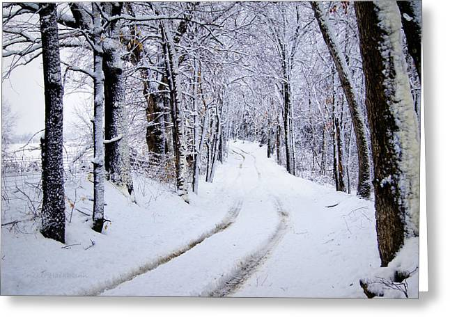 Snowy Roads Photographs Greeting Cards - Through the Woods Greeting Card by Cricket Hackmann