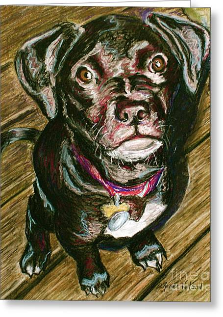 Puppies Pastels Greeting Cards - Throw It Greeting Card by D Renee Wilson