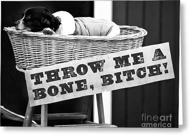 Throw Me A Bone Bitch Greeting Card by John Rizzuto