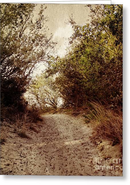 Kite Greeting Cards - Thru The Dunes Greeting Card by Tom Gari Gallery-Three-Photography