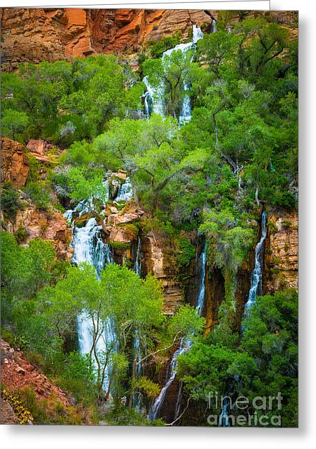 Thunder River Oasis Greeting Card by Inge Johnsson