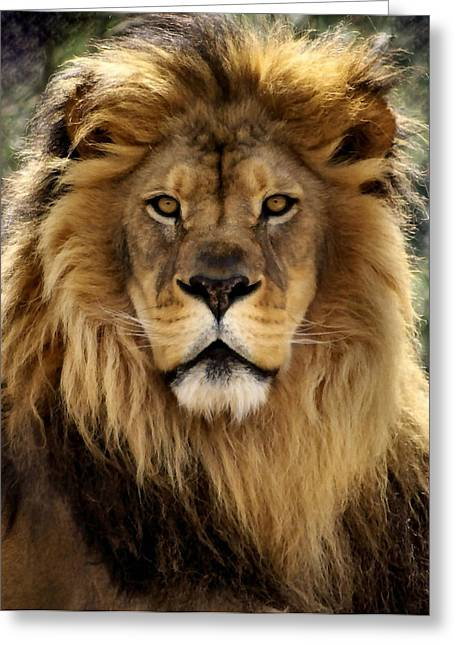 Lion Greeting Cards - Thy Kingdom Come Greeting Card by Linda Mishler