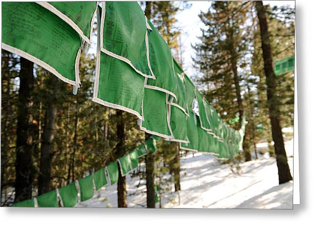 Tibetan Prayer Flags Greeting Card by Jessica Rose