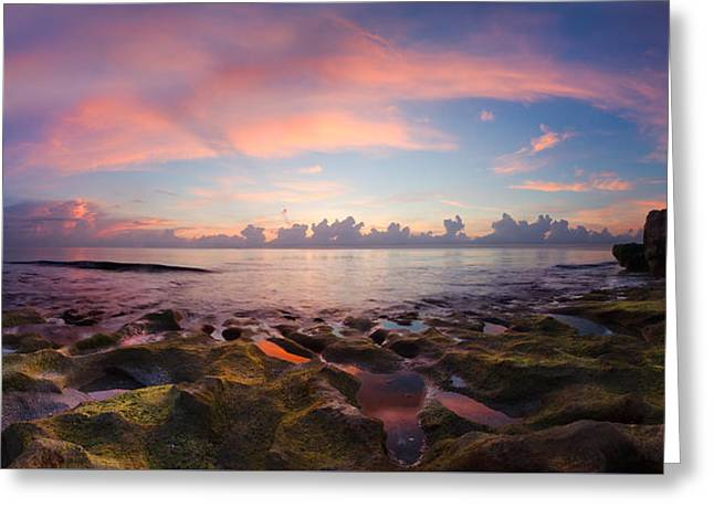 On The Beach Greeting Cards - Tidal Pools at Sunrise Greeting Card by Debra and Dave Vanderlaan