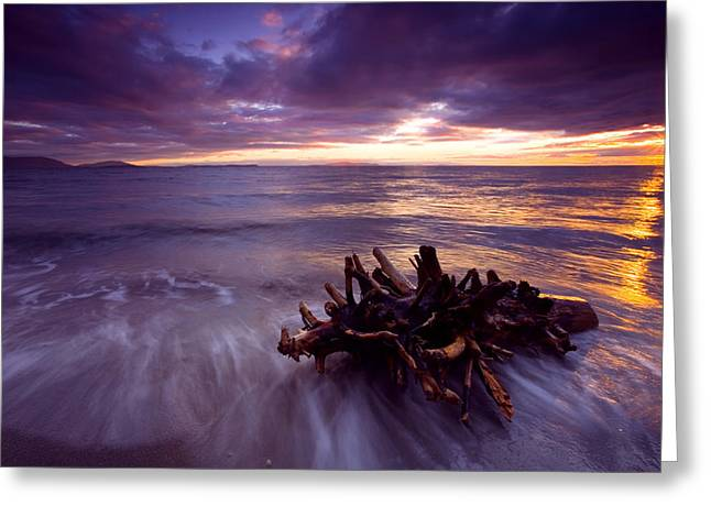 Beaches Greeting Cards - Tide Driven Greeting Card by Mike  Dawson