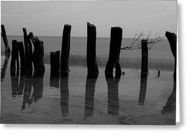 Ocean Art Photos Greeting Cards - Tide Pool I Greeting Card by David Paul Murray