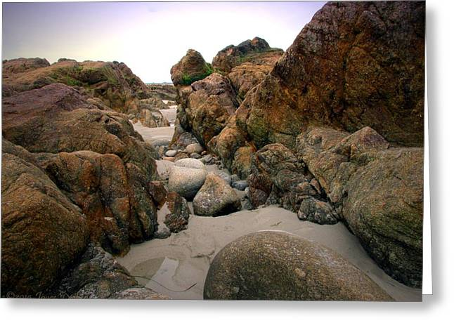 Beach Photography Greeting Cards - Tide Pools Of Monterey Bay Greeting Card by Joyce Dickens