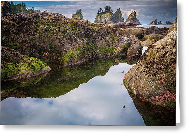Tidepool At Point Of The Arches Greeting Card by Inge Johnsson