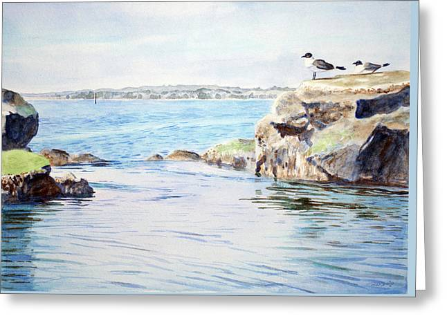 Tidepool With Terns Greeting Card by Christopher Reid
