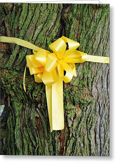 Lyle Huisken Greeting Cards - Tie a Yellow Ribbon Greeting Card by Lyle  Huisken