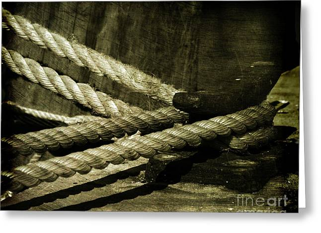 Tied Down For Good Greeting Card by Susanne Van Hulst