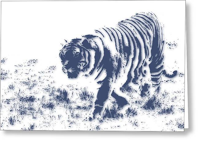 Zimbabwe Photographs Greeting Cards - Tiger 3 Greeting Card by Joe Hamilton