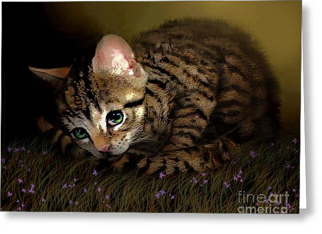Furry Digital Art Greeting Cards - Tiger Ball Greeting Card by Robert Foster