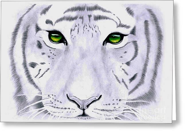 Sacred Drawings Greeting Cards - White Tiger Green Eyes Greeting Card by Camila Jordan