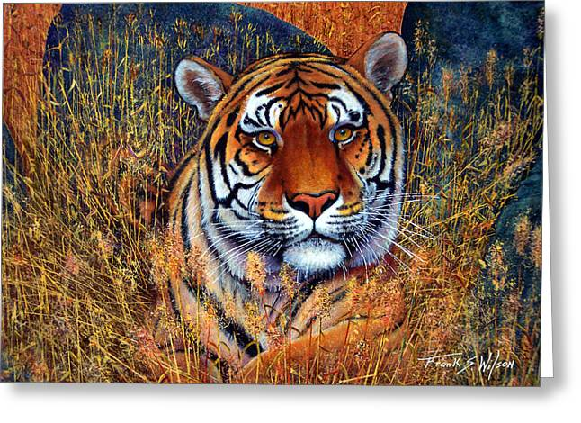 Frank Wilson Greeting Cards - Tiger Greeting Card by Frank Wilson