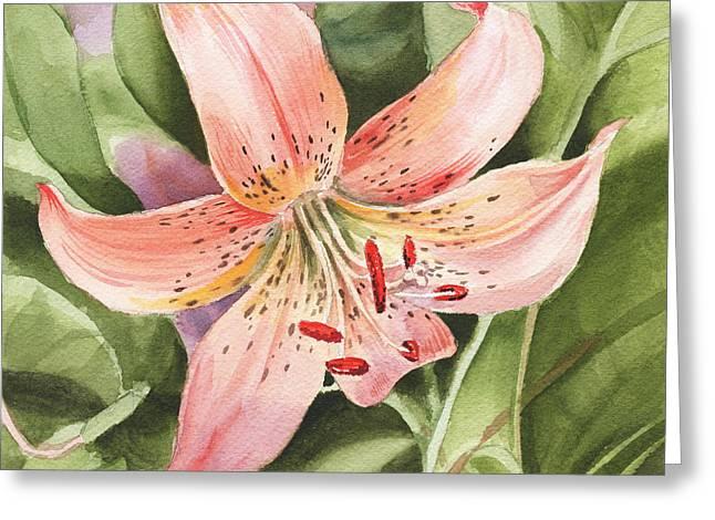 Tiger Lily Greeting Card by Irina Sztukowski