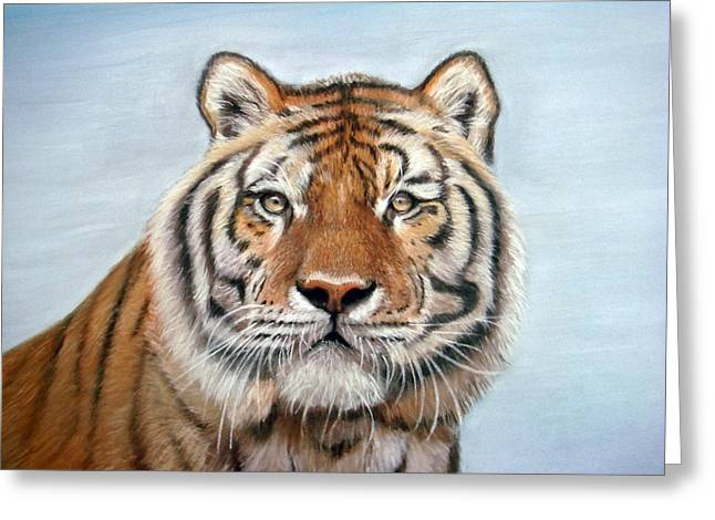 Mary Mayes Greeting Cards - Tiger Greeting Card by Mary Mayes