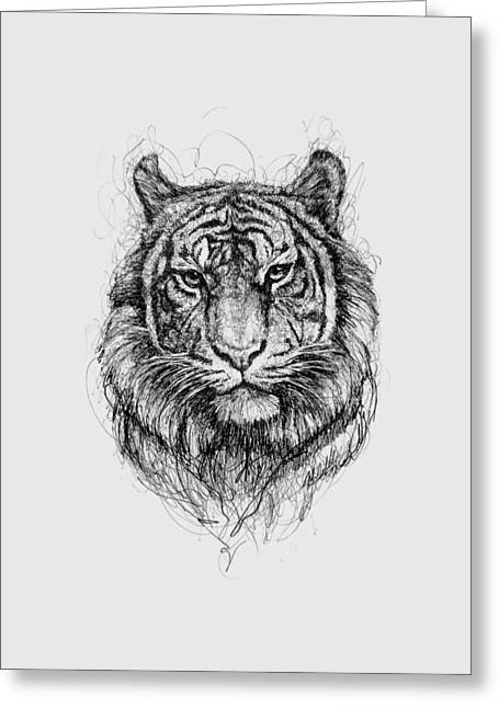 Bengal Drawings Greeting Cards - Tiger Greeting Card by Michael  Volpicelli