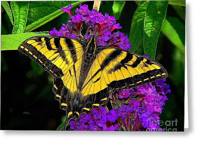 Common Tiger Butterfly Greeting Cards - Tiger Swallowtail Butterfly Greeting Card by Patrick Witz
