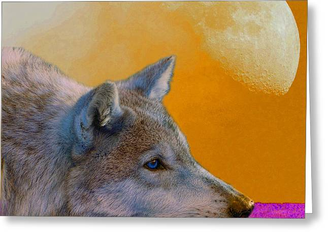 Wolf Moon Greeting Cards - Timber Wolf Under the Moon Greeting Card by Tina B Hamilton