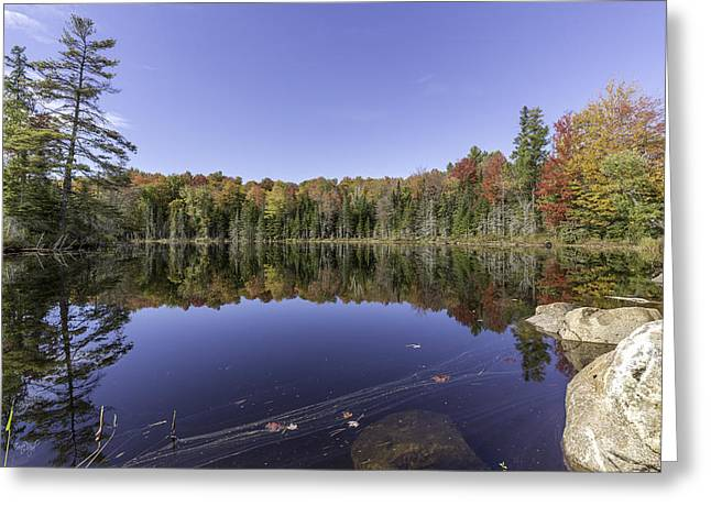 Time At The Lake Greeting Card by Everet Regal
