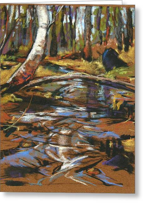 Maine Landscape Pastels Greeting Cards - Time Between Greeting Card by Kay Sullivan