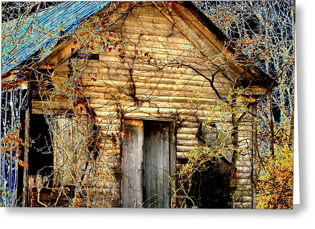 Tennessee Barn Greeting Cards - Time Doors Greeting Card by Lee Plate