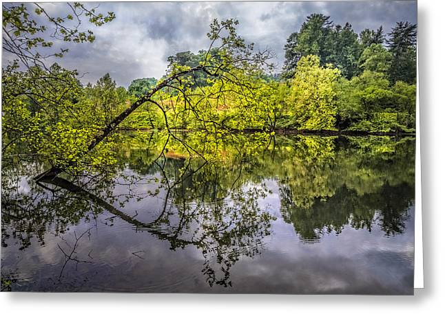 Willow Lake Greeting Cards - Time for Reflecting Greeting Card by Debra and Dave Vanderlaan
