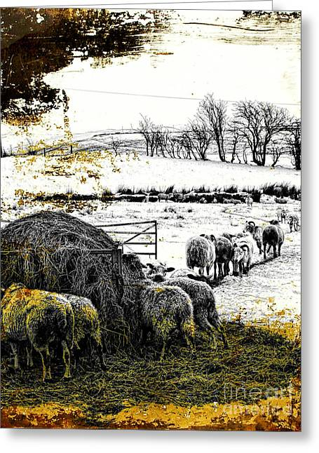 Pasture Scenes Mixed Media Greeting Cards - Time for tea Greeting Card by Gillian Singleton
