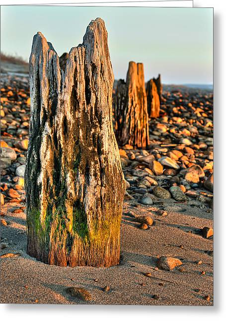 Duxbury Greeting Cards - Time Stands Still Greeting Card by Andrew Crispi