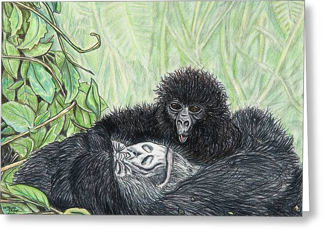 Gorilla Drawings Greeting Cards - Time To Get Up Greeting Card by Stephen Taylor