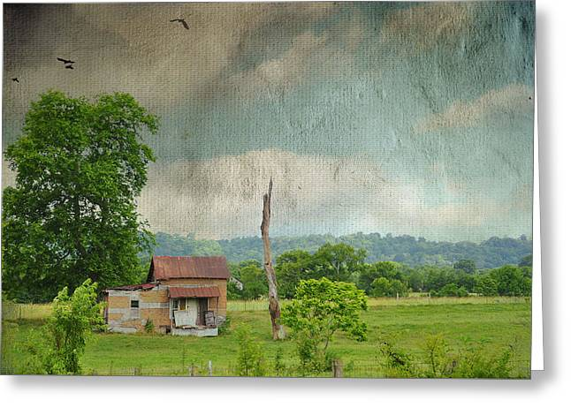 Tennessee Farm Digital Greeting Cards - Time To Go Home Greeting Card by Jan Amiss Photography