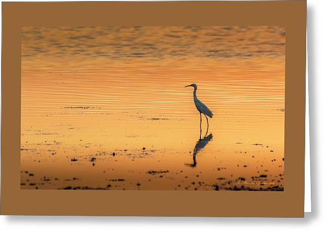 Time To Reflect Greeting Card by Marvin Spates