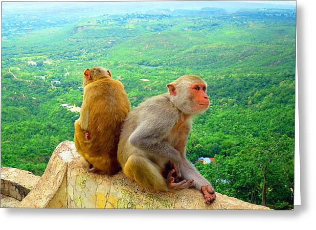 Mount Popa Greeting Cards - Time to Relax Greeting Card by Scott Brindle