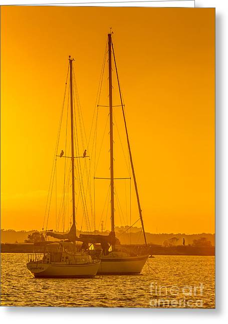 Yacht Club Greeting Cards - Time To Sail Greeting Card by Marvin Spates